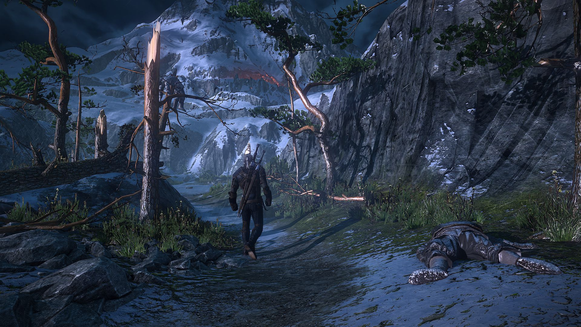 6255_the_witcher_3_wild_hunt_forest_path