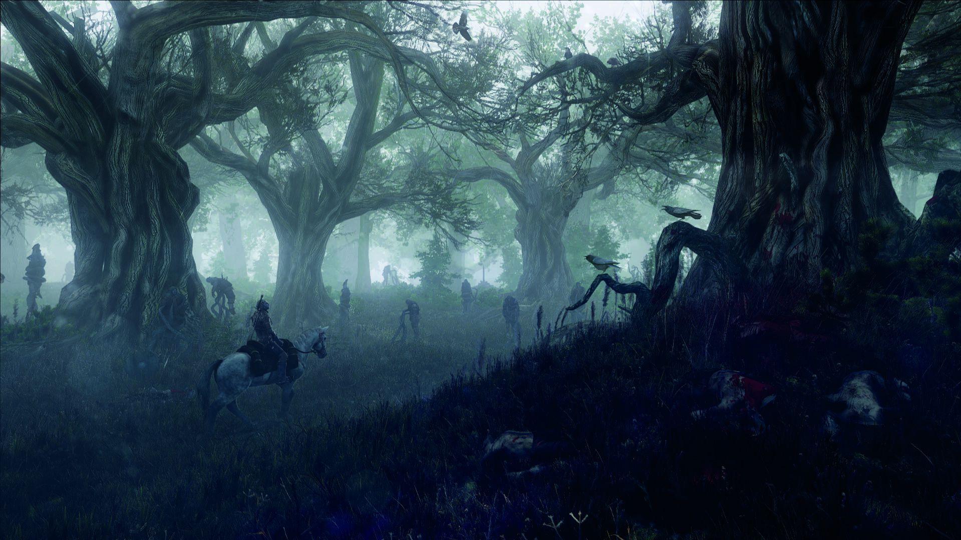 6263_the_witcher_3_wild_hunt_geralt_leshen_forest