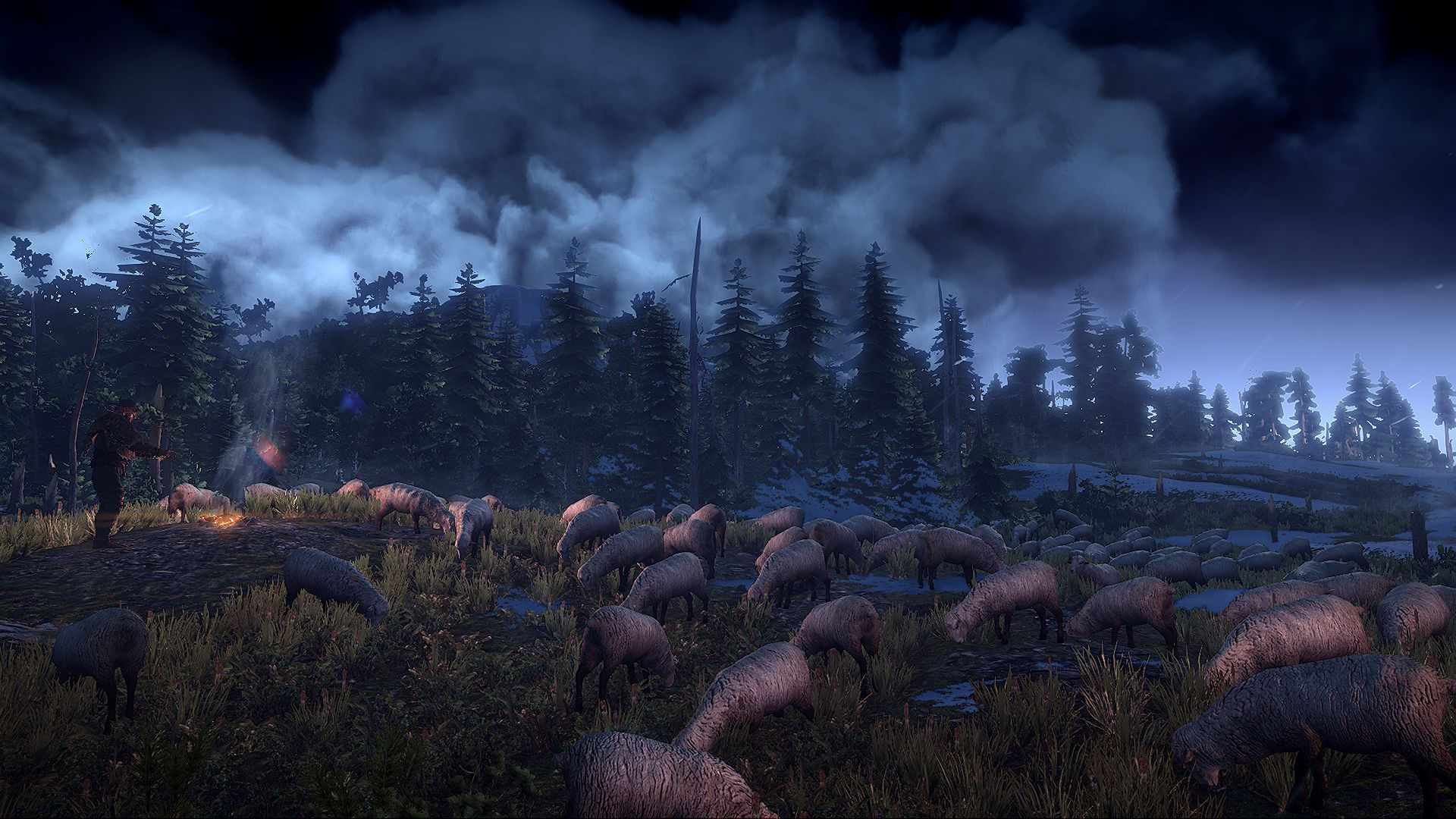 6289_the_witcher_3_wild_hunt_sheep