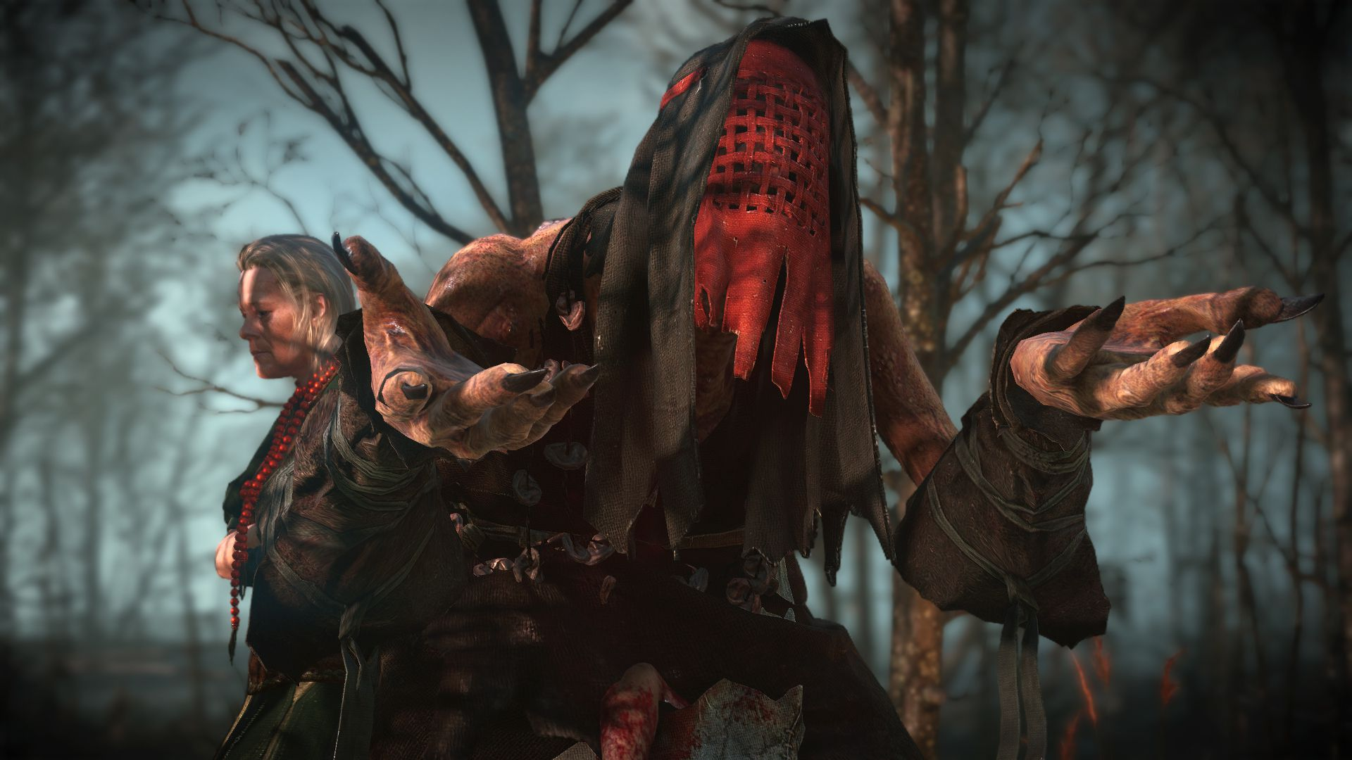 the_witcher_3_wild_hunt-witch_1407869459