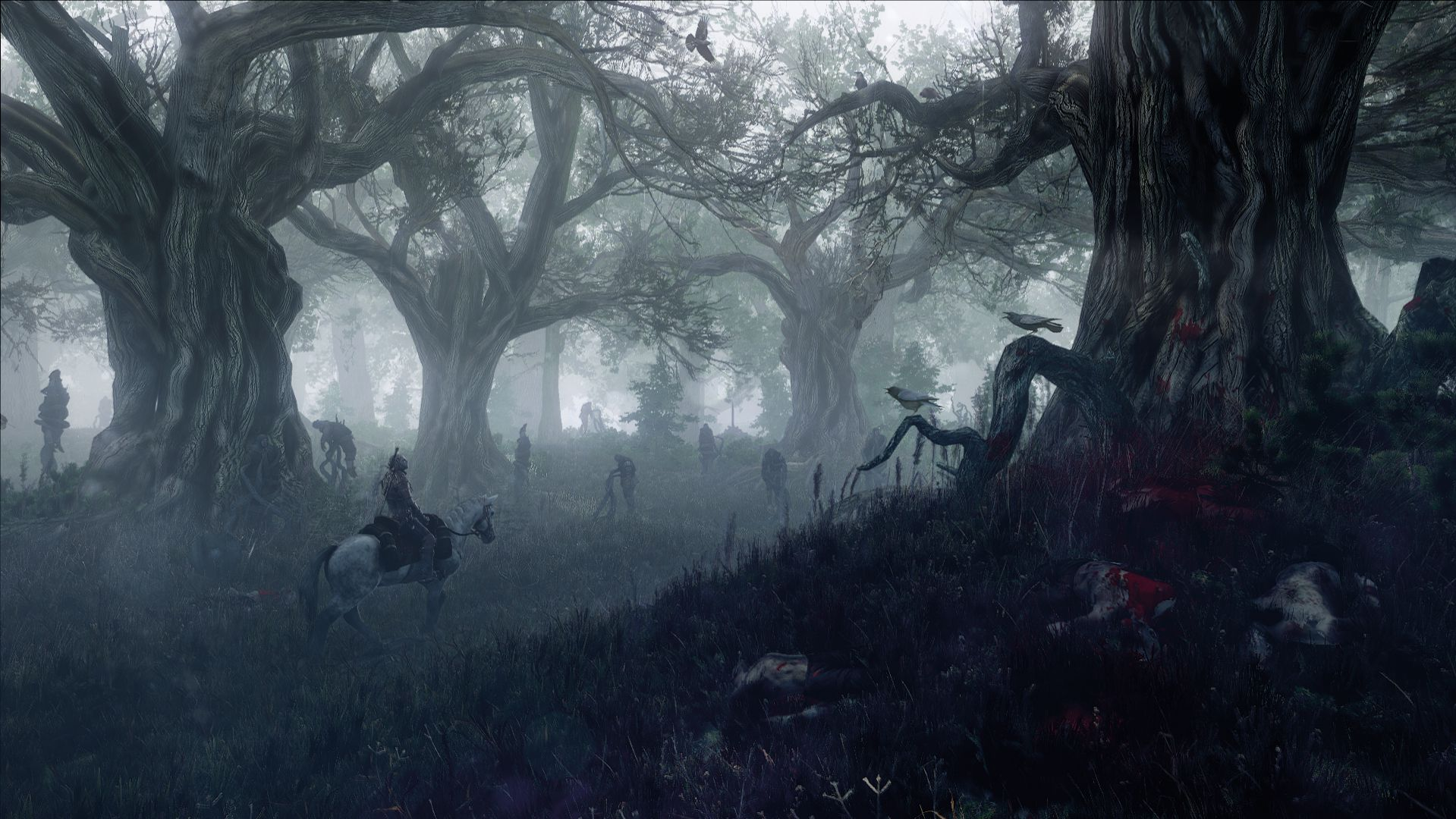 the_witcher_3_wild_hunt_geralt_in_leshens_forest_1402422264