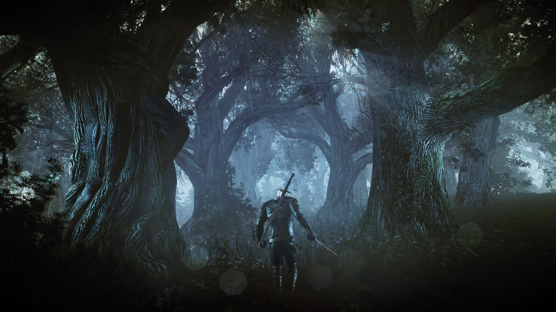 the_witcher_3_wild_hunt_geralt_in_the_forest_1402422266