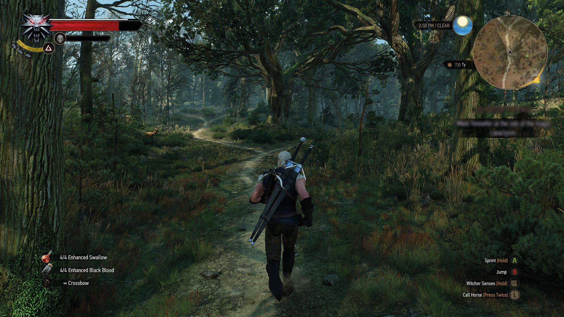 the_witcher_3_wild_hunt_real_witchers_wear_short_sleeves_when_jogging_in_the_woods_1430900917