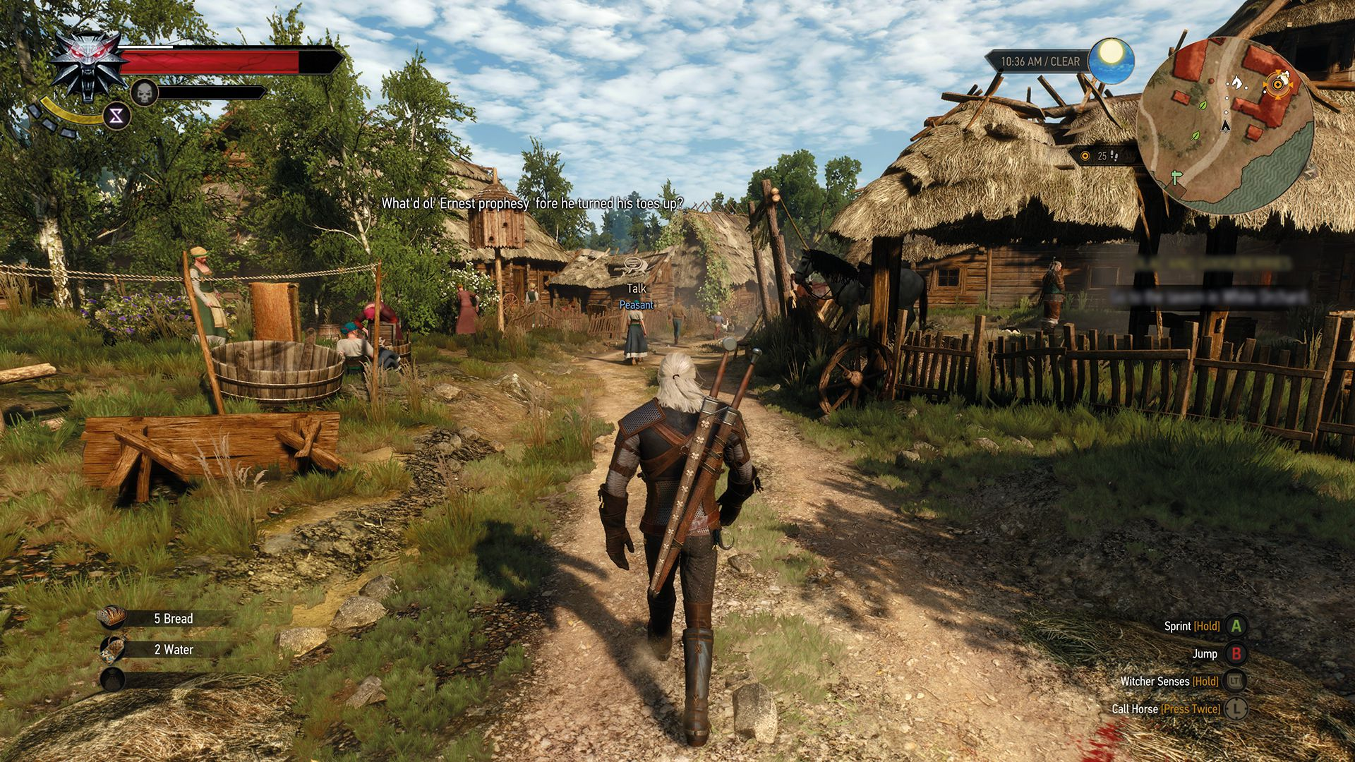 the_witcher_3_wild_hunt_wonder_how_much_theyd_charge_to_wash_my_unspeakables_1430900935
