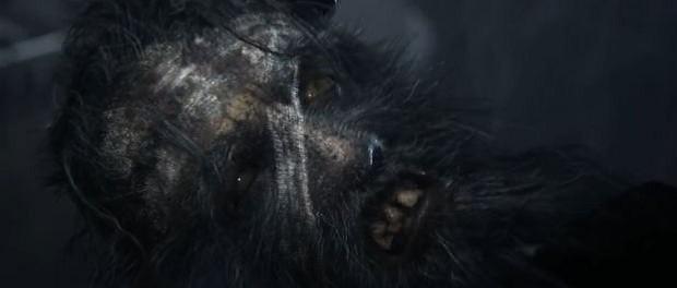 Project Beast Teaser Bild