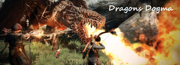 Dragons Dogma Feature
